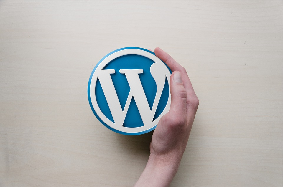 What You Need To Run An eCommerce Website With WordPress