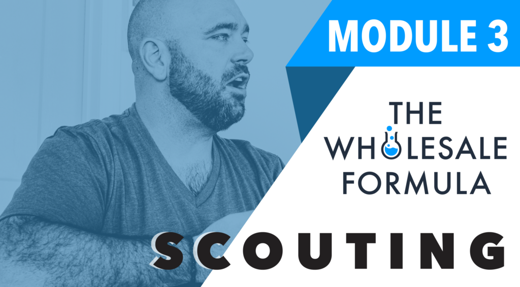 The wholesale formula Third Module -Scouting